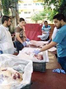 سنّة وفرحة بعيد الأضحى.. 5000 عائلة تستفيد من مشروع سنّة الأضاحي عبر مؤسسة نماء