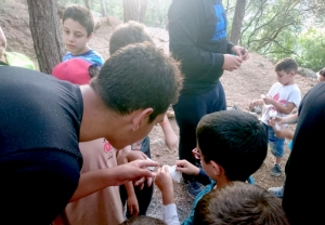 المخيم الصيفي الختامي لدورة فتيان المساجد في بيروت